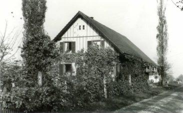 Alte Wildeggerstrasse 11
