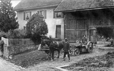 Bauer Bertschi am Dorfrain