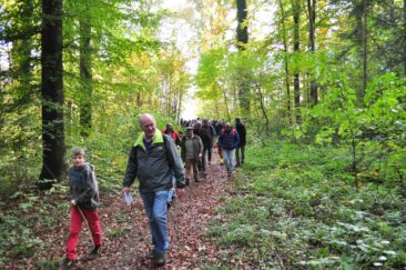 Wald Spaziergang 22.10.2016