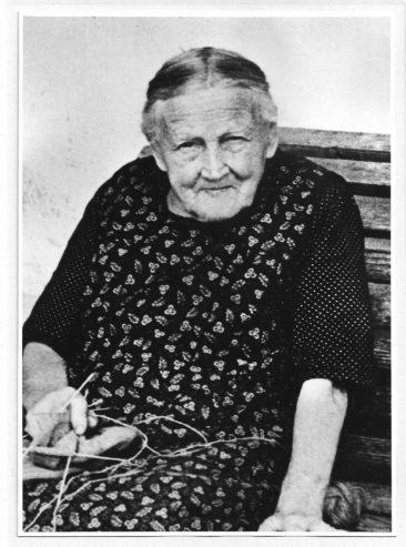 Elise Wilk-Meier 1866-1952